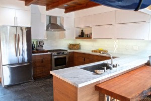 KitchenRemodelHouzzPics1